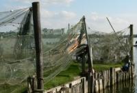 Fischernetze am Holm