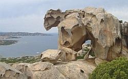 Der Bär ist los - Blick vom Capo d'Osro