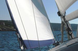fam14-11-backbord-bug