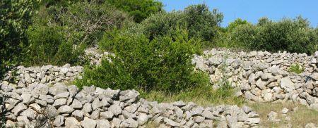 fam14-24-steine-mauern