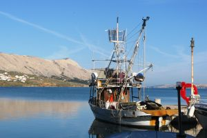 rev14-m11-romantic-trawler
