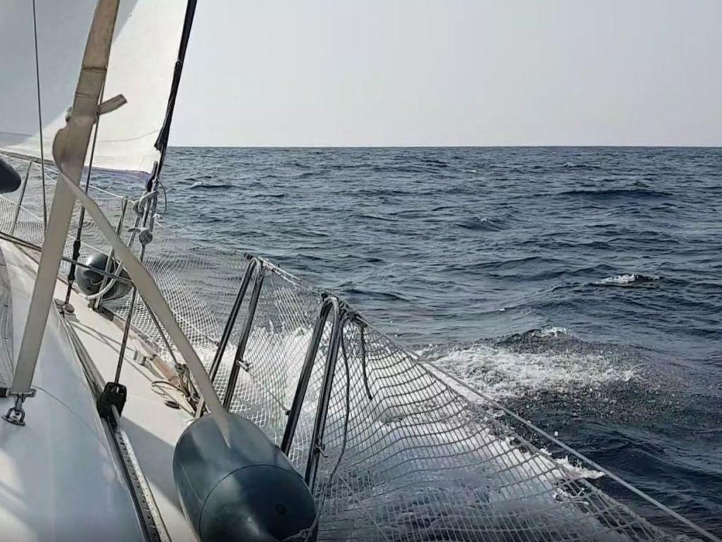 fun17 s43 sailing