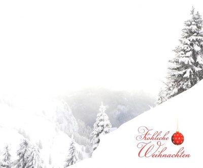 wei17 a01 winterwald