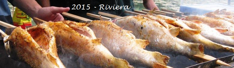 j25c 2015 sofe grillfische